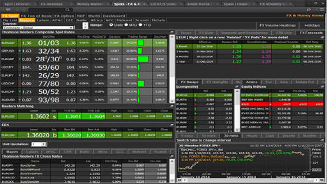 Eikon Flex Views
